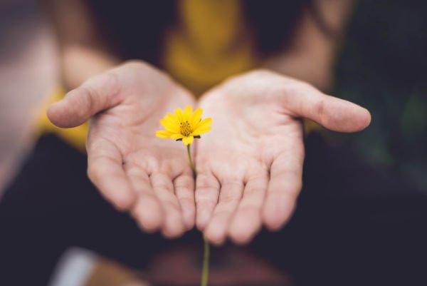 handen_bloem_normaal